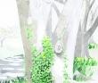 新目惠 透明水彩。風景、人物、緑、ランドスケープ。装画コンペvol.6準グランプリ。