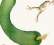 果蔬蛙図2
