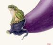 果蔬蛙図1