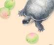 果蔬亀図1