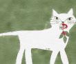 猫と赤ずきん
