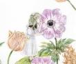 中野愛菜 透明水彩、アクリル、色鉛筆、絵本、ファンタジー、植物、装画。