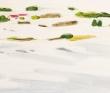 おぎわら朋弥 風景、人物、絵具、装画、挿絵、装画コンペ vol.18、準グランプリ。